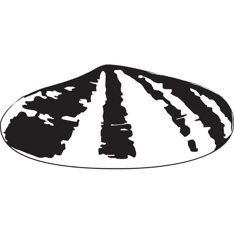 Mẫu thiết kế logo của Shell năm 1901.