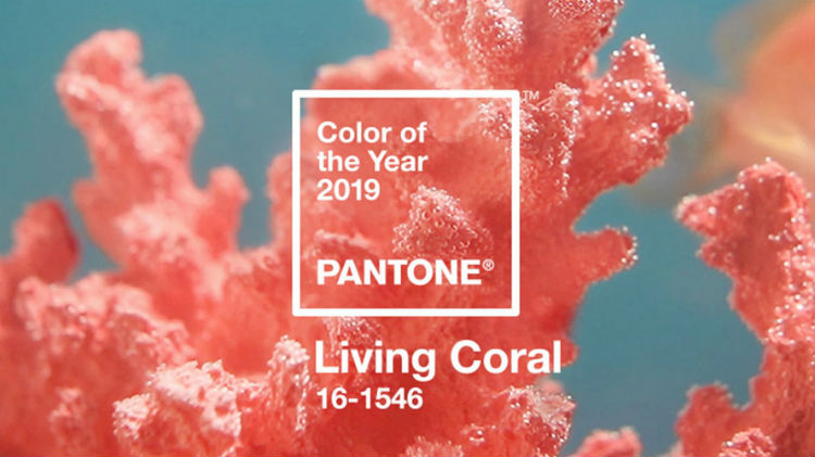 Màu sắc của năm của Pantone 2019