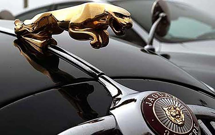 Thiết kế logo của Jaguar.