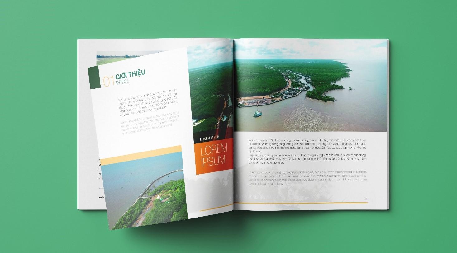 Mẫu hồ sơ năng lực Trung tâm xúc tiến đầu tư Doanh nghiệp tỉnh Cà Mau (2)