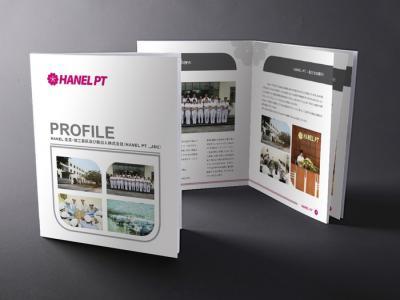 HANEL PT - Thiết kế hồ sơ năng lực công ty