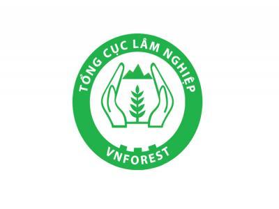 VNDOF - Thiết kế logo cho Tổng cục Lâm nghiệp Việt Nam