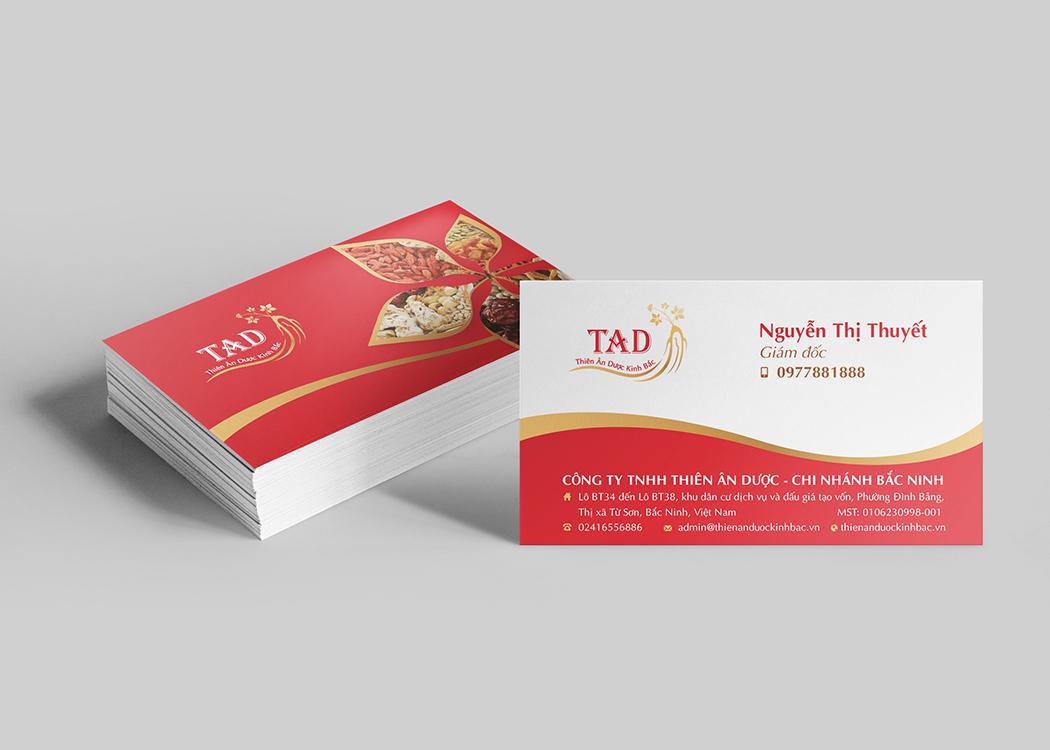 Thiết kế logo và nhận diện thương hiệu dược phẩm Thiên Ân Dược tại Bắc Ninh, Hà Nội