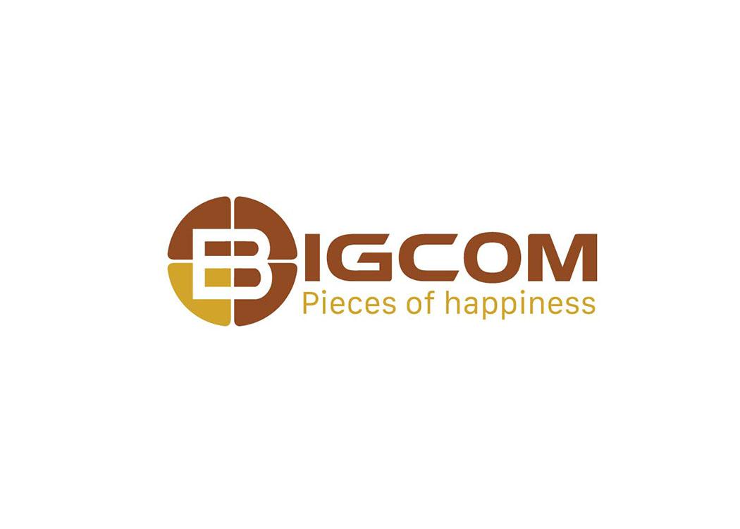 Thiết kế logo và sáng tạo tên thương hiệu công ty BIGCOM tại Hà Nội