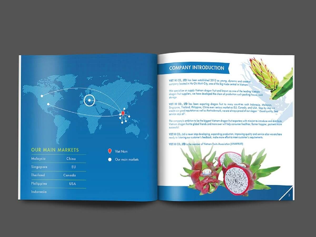 Thiết kế Catalogue giới thiệu sản phẩm nông sản trái thanh long tại TP HCM