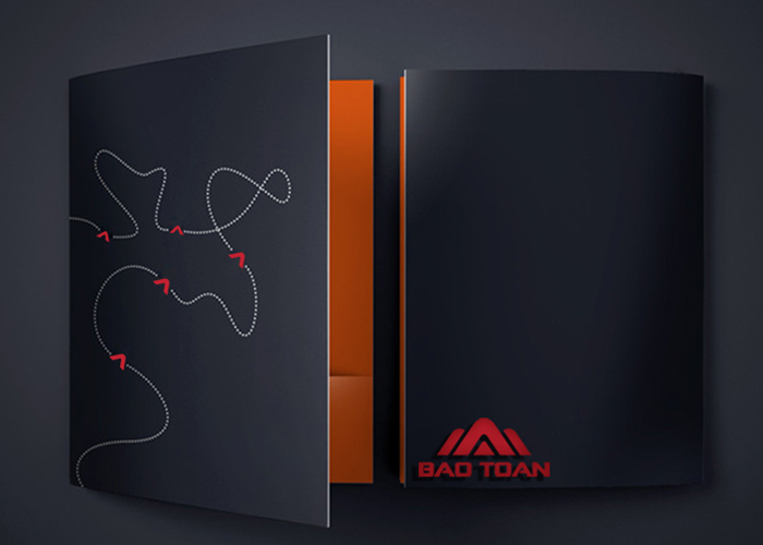 Thiết kế logo thiết bị giám sát Bảo Toàn tại TP HCM