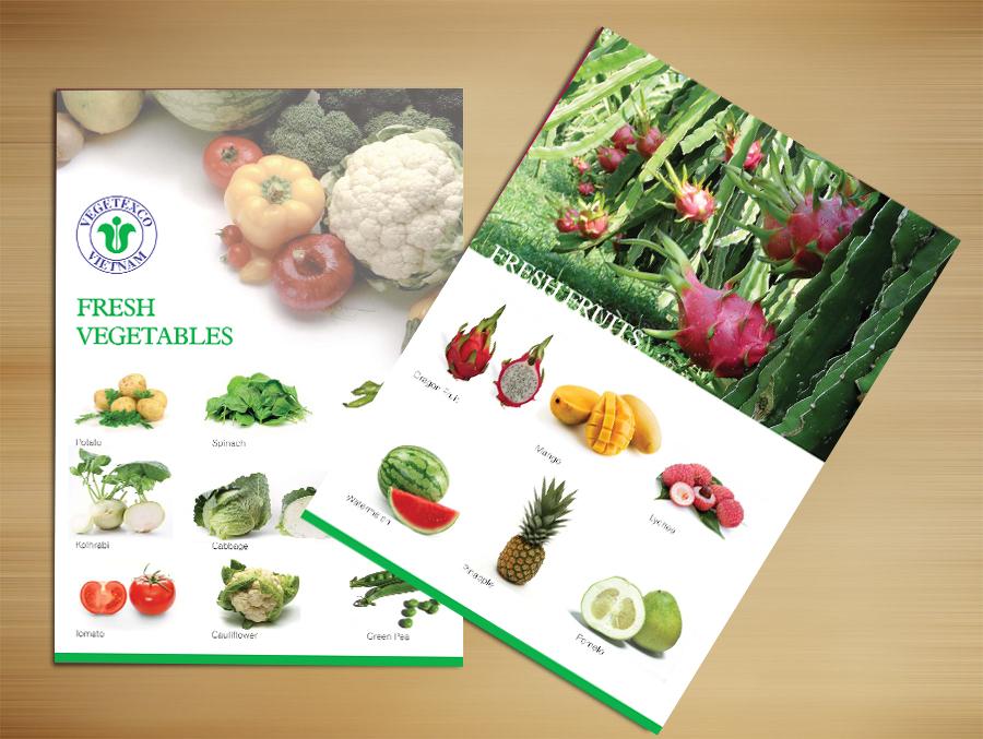 Thiết kế catalog giới thiệu sản phẩm công ty VEGTEXCO tại Hà Nội