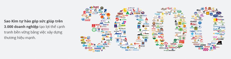 Giới thiệu về công ty giải pháp thương hiệu Sao Kim