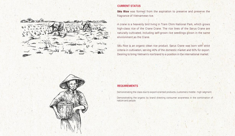 [Saokim.com.vn] Dự án Nghiên cứu thương hiệu Gạo Sếu Rice (Tram Chim Farming) từ Sao Kim Branding